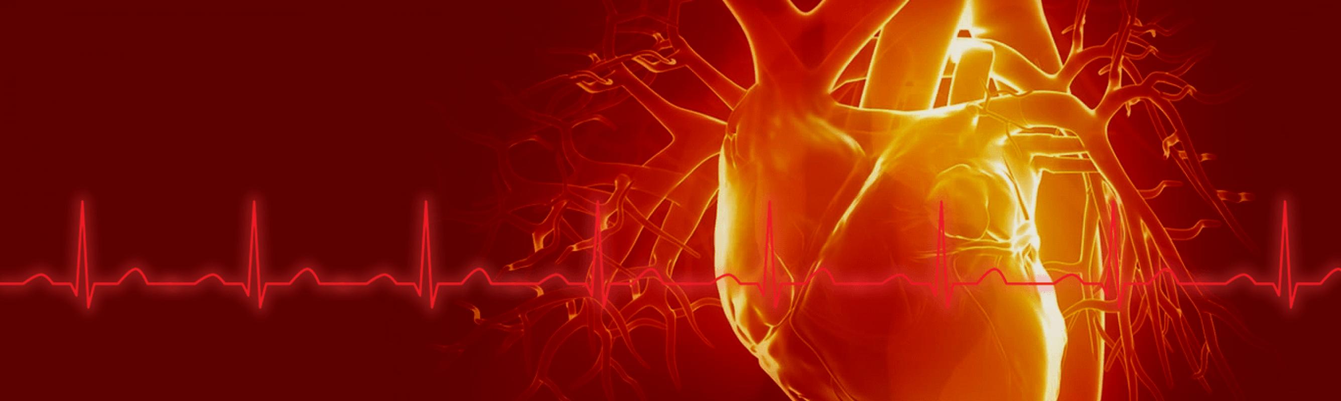 Viron suurin sydänleikkauksiin ja invasiiviseen sydänkirurgiaan erikoistunut sydänkeskus