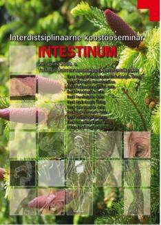 intestinum.jpg