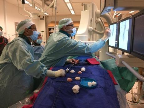 Uuendusliku operatsiooni läbi viinud meeskond